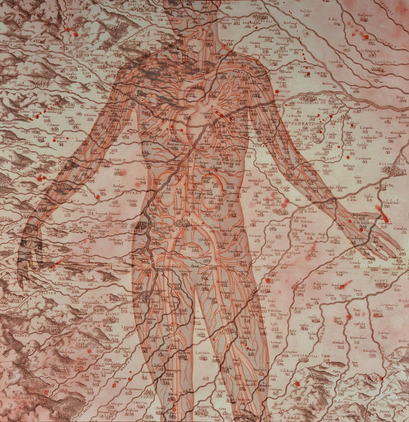 Stefano Bolzano, Di questa terra, acquerello su carta applicato su due pannelli, 104x106 cm, 2020.