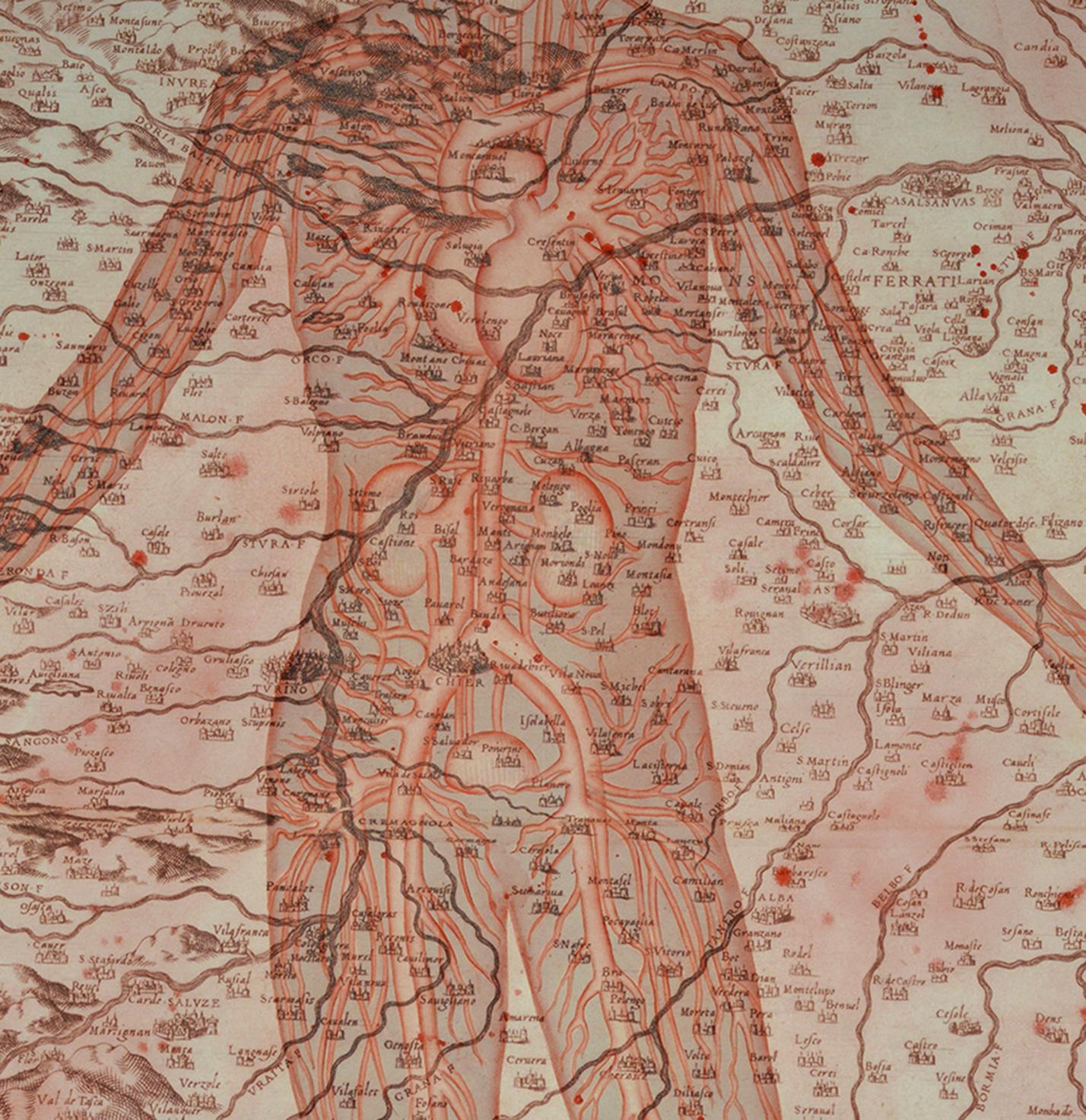 Stefano Bolzano, Di questa terra, acquerello su carta applicato su due pannelli, 104x106 cm, 2020 (dettaglio).